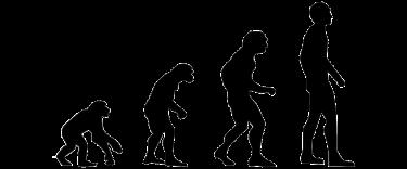 【原因/科学的根拠/メカニズム】薄毛/脱毛/ハゲ=脂肪の多い食べ物×加齢【ネイチャー】白髪化へ影響を及ぼす遺伝子『IRF4』